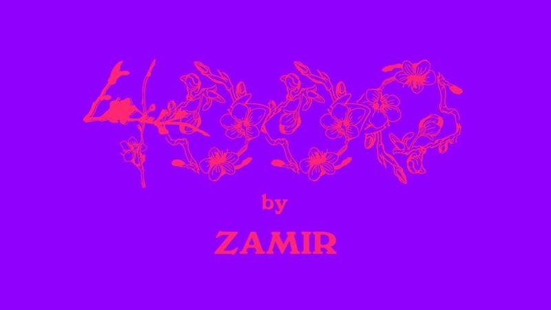 Zamir 4000